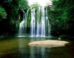Mocht u op zoek zijn naar het paradijs op aarde, het hof van Eden bestaat, haar naam: Costa Rica!
